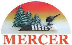 Mercer-logo-01